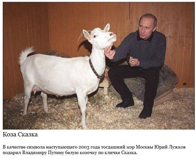 Самые запоминающиеся подарки Путину (15 фото)