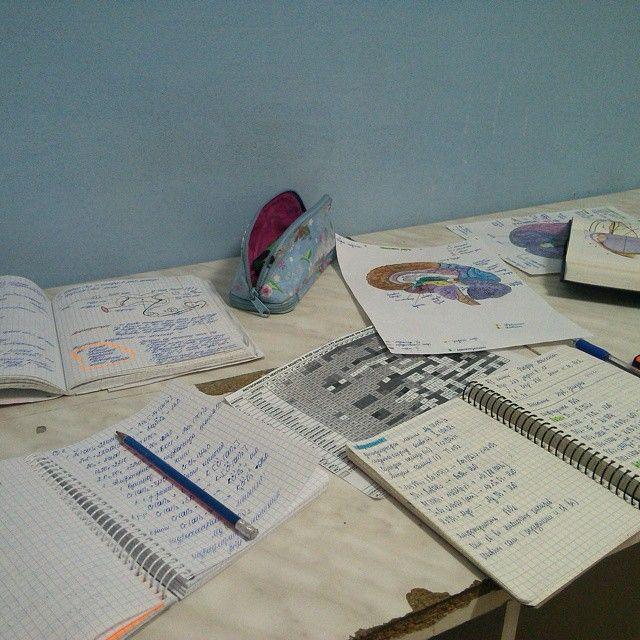 Фотографии студентов из общаг (40 фото)