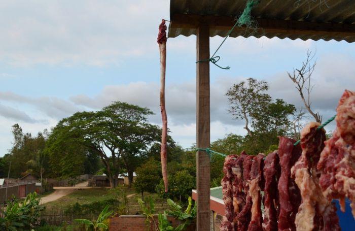 Необычное применение обычных вещей на Мадагаскаре (6 фото)
