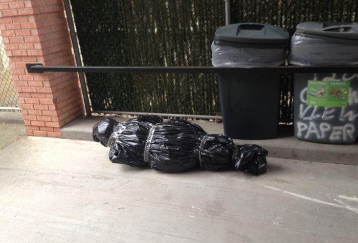 Почему не стоит упаковывать елку (3 фото)