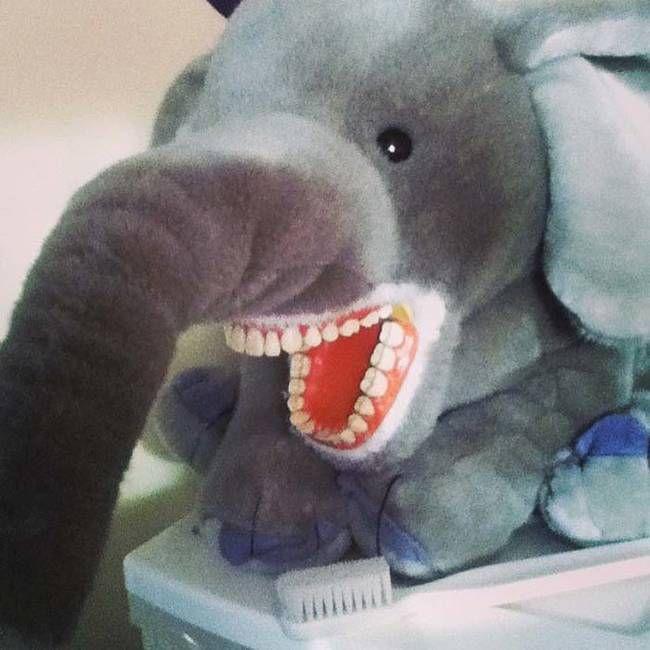 На чем тренируются студенты-стоматологи (14 фото)