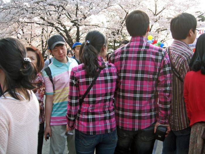 Странные нормы жизни жителей Южной Кореи (10 фото)