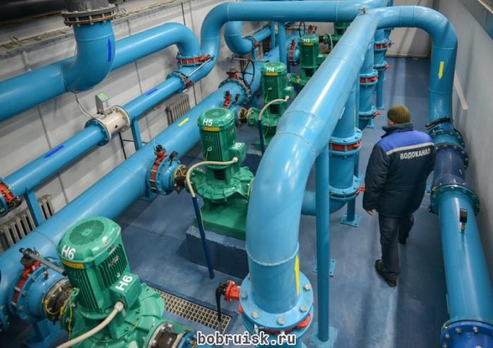 Спекуляция на чистой воде (10 фото + видео)