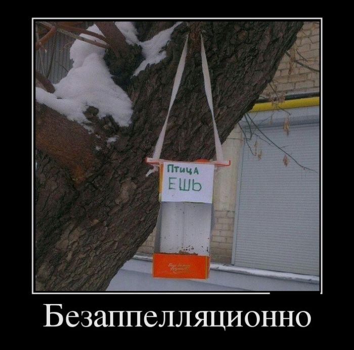 http://trinixy.ru/pics5/20150116/demotivatory_15.jpg