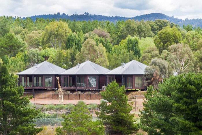 Необычный отель в австралийском зоопарке (8 фото)