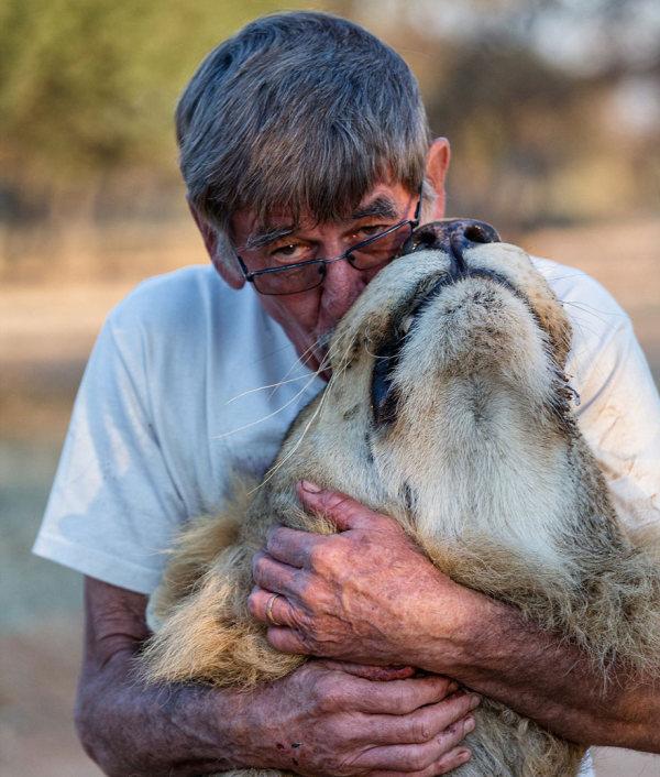 В Южной Африке мужчина заменил льву мать (11 фото)