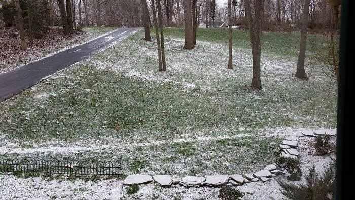 Дети штата Вирджиния освобождены от учебы из-за снега (3 фото)