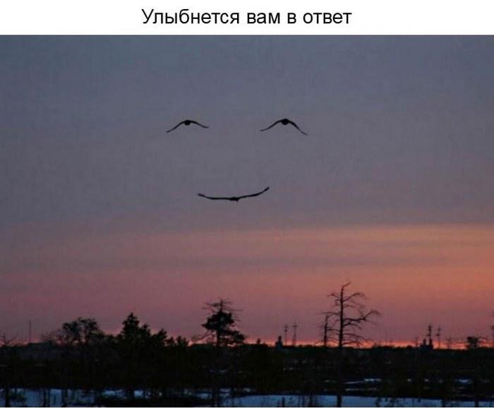 О ценности улыбки в нашей жизни (23 фото)