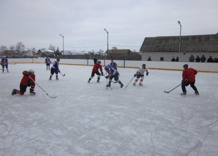 Хоккейная площадка собственными силами (42 фото)