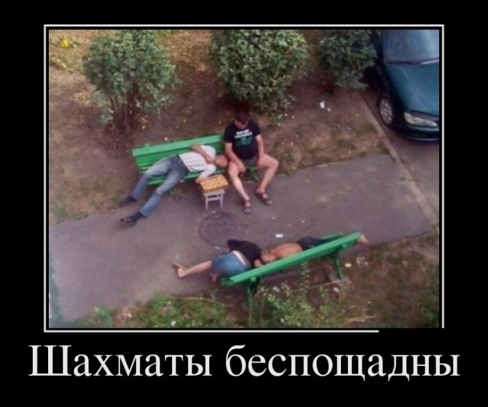 http://trinixy.ru/pics5/20150123/demotivatory_16.jpg