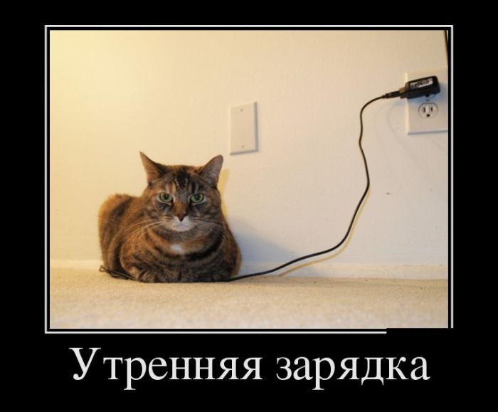 http://trinixy.ru/pics5/20150123/demotivatory_20.jpg