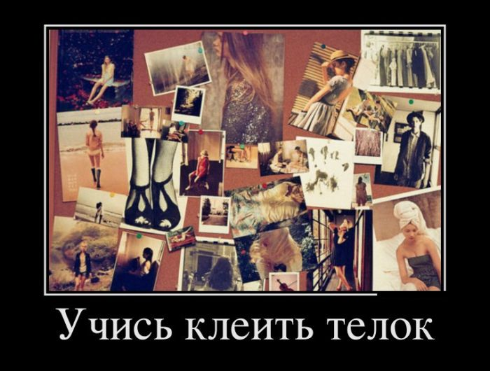 http://trinixy.ru/pics5/20150123/demotivatory_24.jpg