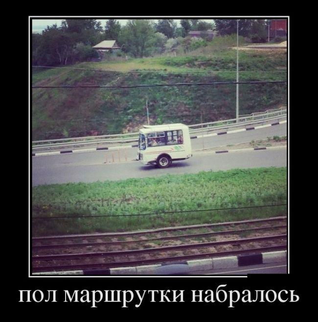http://trinixy.ru/pics5/20150123/demotivatory_26.jpg