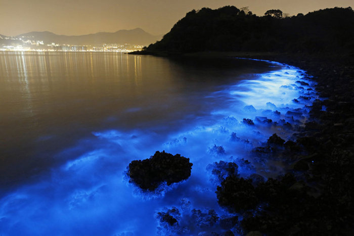 Удивительное природное явление на побережье Гонконга (4 фото)