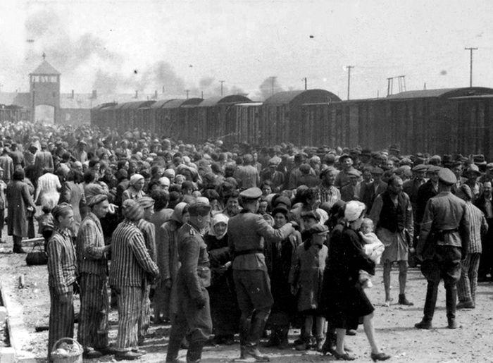 Освенцим в страшных цифрах и ужасающих фактах (16 фото)