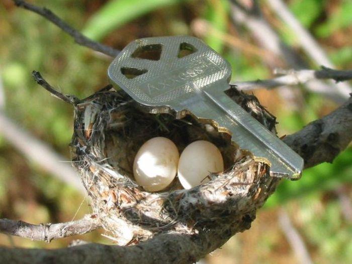 Где взяли такой огромный ключ?))))))))))