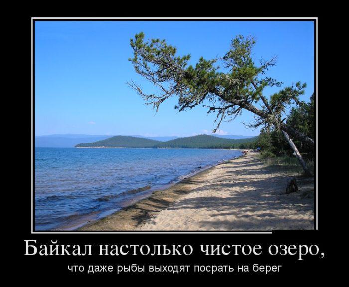 http://trinixy.ru/pics5/20150130/demotivatory_10.jpg