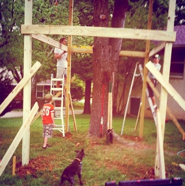 Оригинальный домик во дворе, построенный вокруг дерева (31 фото)