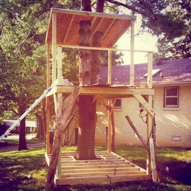 Как сделать дом на дереве своими руками для детей во дворе 50