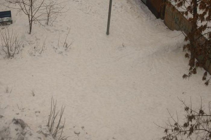 Саратов покрыт оранжевым снегом (15 фото + видео)