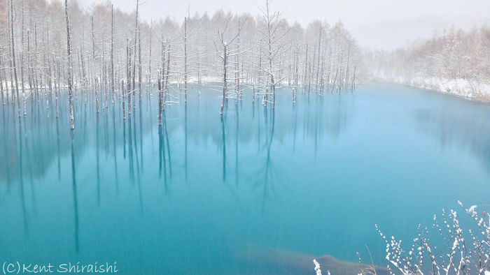 Голубой пруд города Бией на фотографиях Кента Шираиши (14 фото)