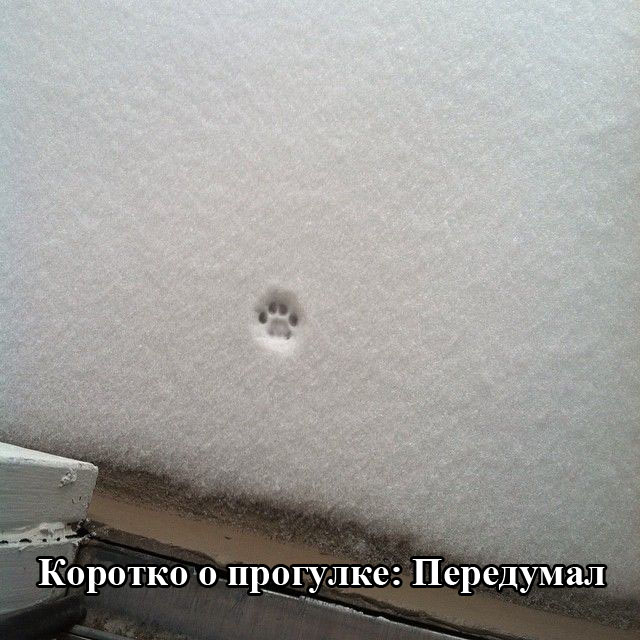 podborka_02.jpg