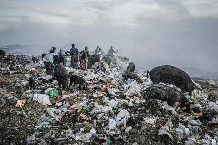 Пост о жизни обитателей свалки на острове Гаити (29 фото)