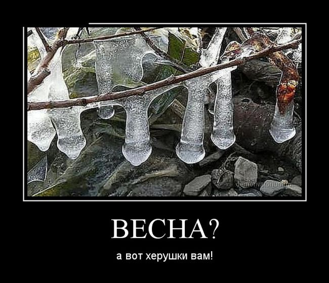http://trinixy.ru/pics5/20150206/demotivatory_29.jpg