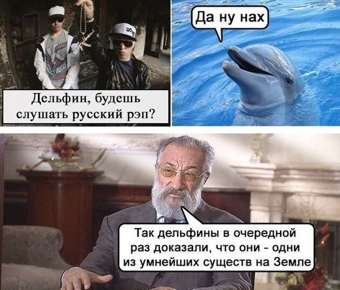 http://trinixy.ru/pics5/20150206/podborka_51.jpg