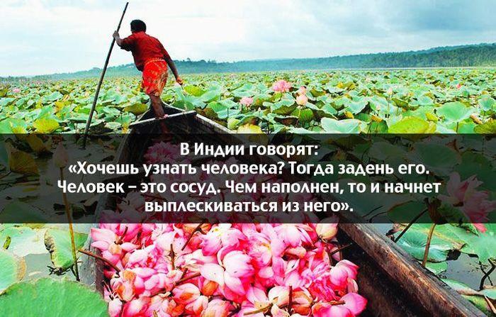 http://trinixy.ru/pics5/20150206/podborka_89.jpg