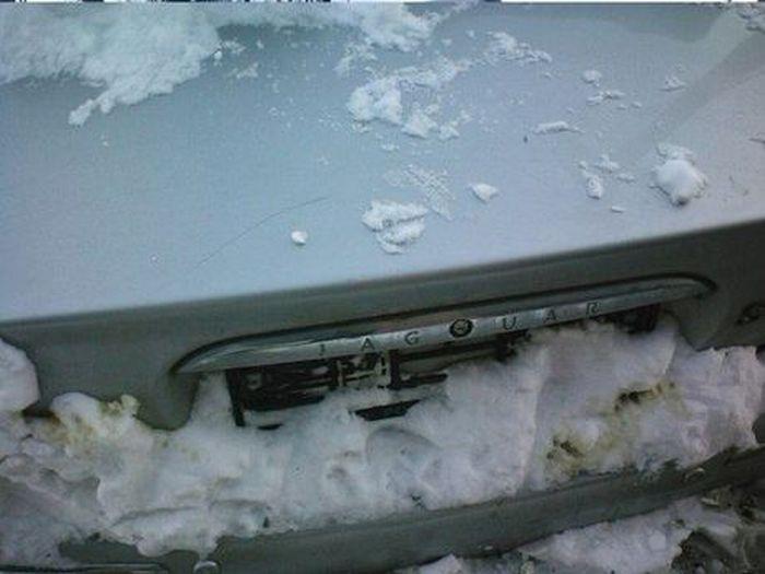 В Омске посреди кучи мусора стоит автомобиль Jaguar (4 фото)