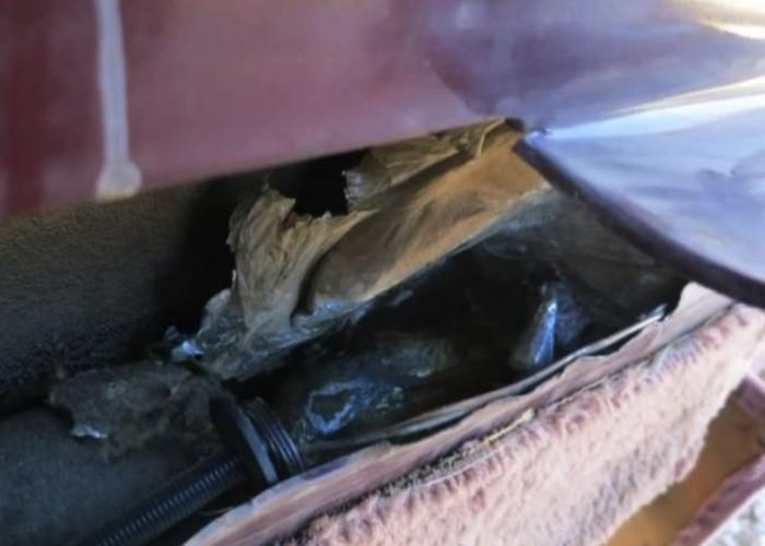 Американка нашла в соей машине более 6 килограмм марихуаны от прошлого владельца (9 фото)