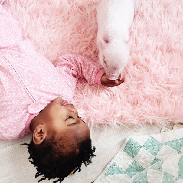 Милейшие снимки из Instagram фотографа Линдси Бонник (18 фото)