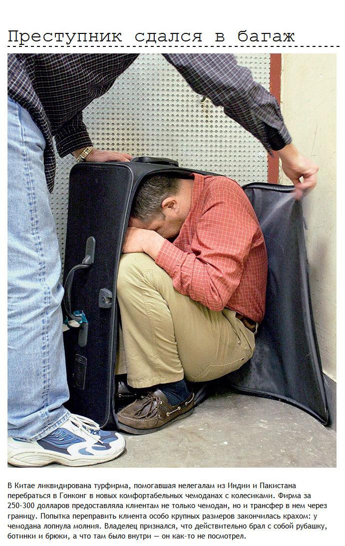 Провалы находчивых контрабандистов и нелегалов (12 фото)
