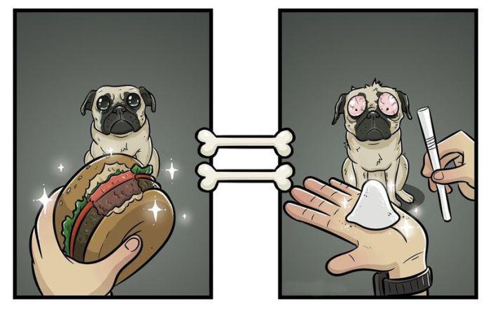 Окружающий мир глазами людей и собак (7 картинок)