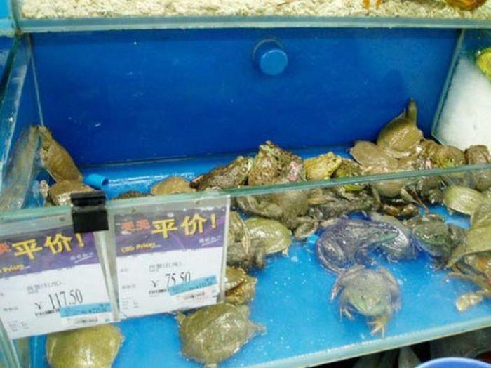 Типичные продукты китайского супермаркета (34 фото)
