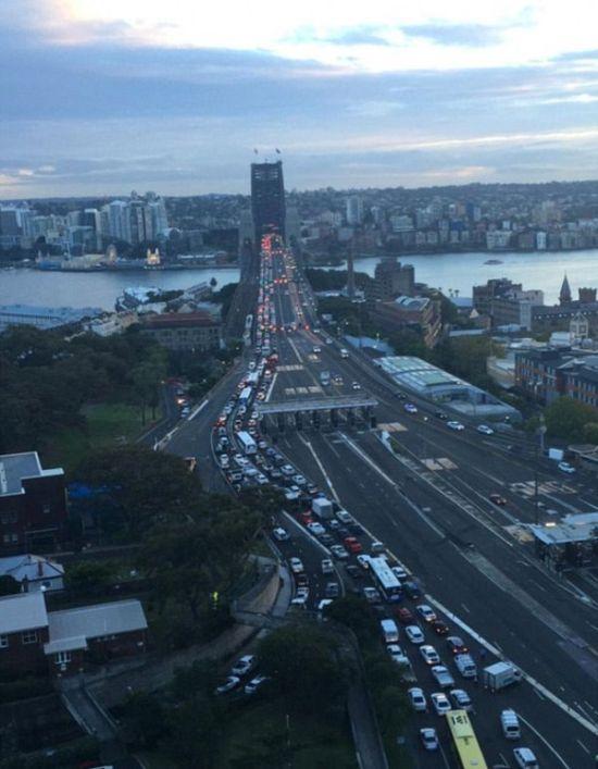 Жительница Сиднея покурила марихуану и нанесла ущерб городу на 50 млн долларов (10 фото)