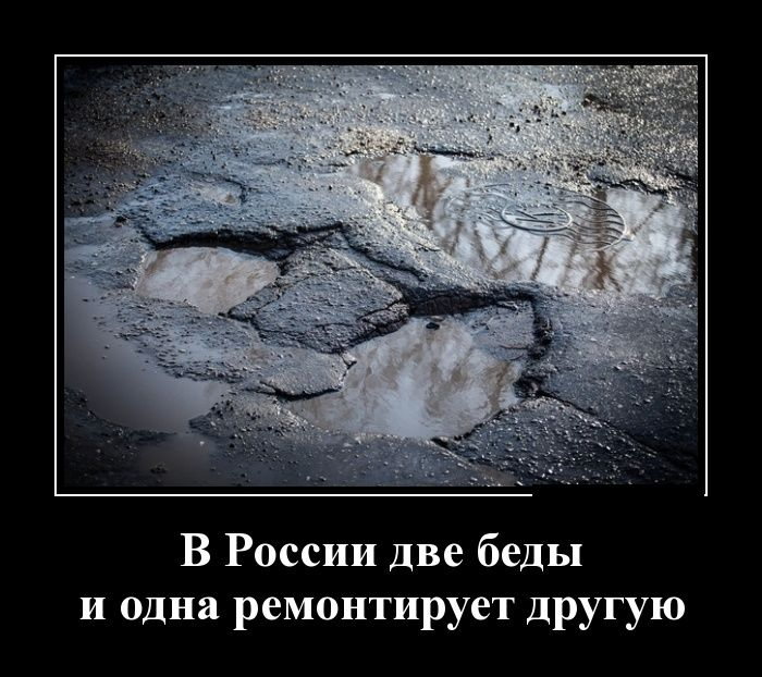 http://trinixy.ru/pics5/20150227/demotivatory_26.jpg
