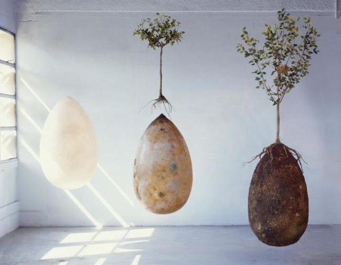 Новая концептуальная технология захоронения умерших людей (11 фото)
