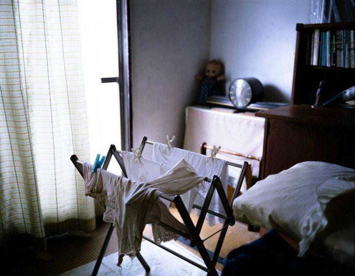 Кодокуси – новая проблема японского общества (13 фото)