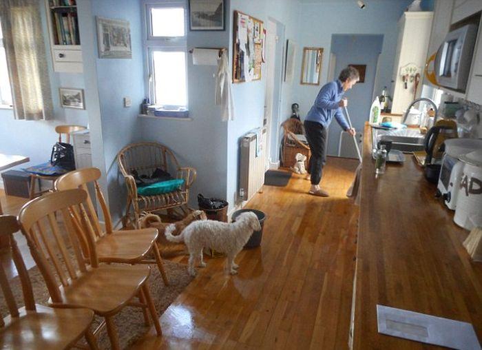 В дом пенсионерки наведались незваные гости (9 фото)