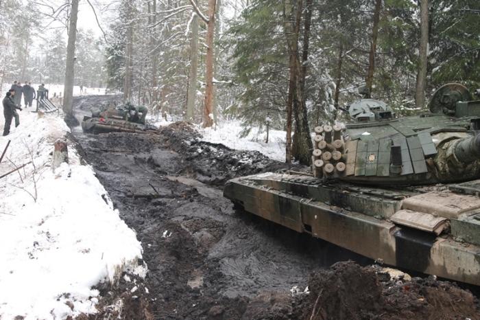 Приключения польских танкистов в лесу (27 фото)