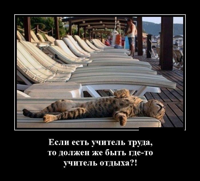 http://trinixy.ru/pics5/20150306/demotivatory_02.jpg