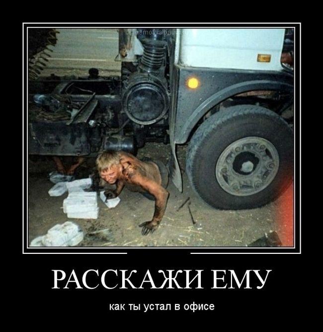 http://trinixy.ru/pics5/20150306/demotivatory_08.jpg