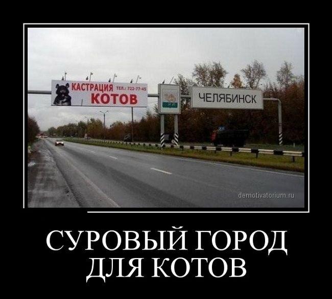 http://trinixy.ru/pics5/20150306/demotivatory_12.jpg