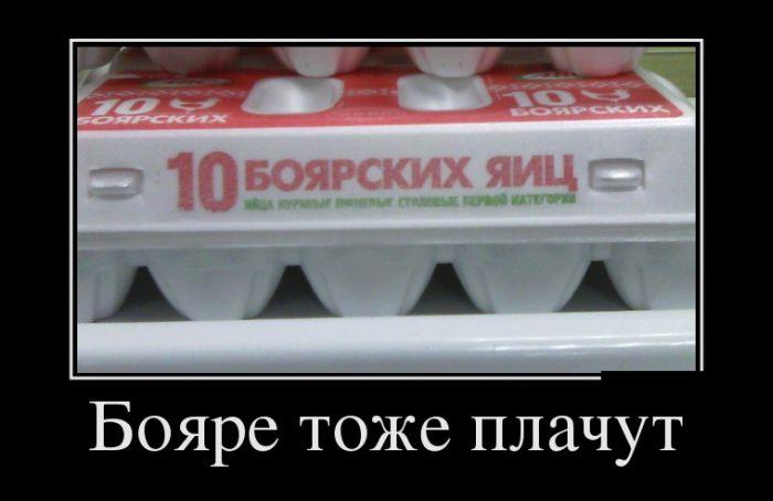 http://trinixy.ru/pics5/20150306/demotivatory_21.jpg