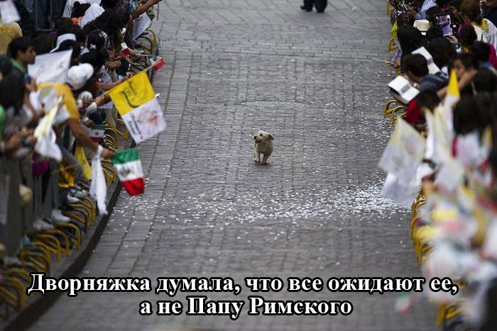 http://trinixy.ru/pics5/20150306/podborka_03.jpg