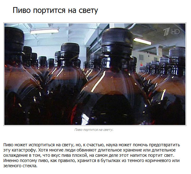Интересные факты о пиве (10 фото)