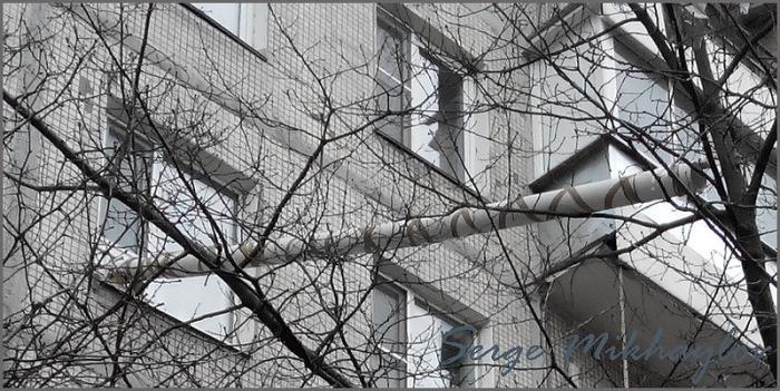 Котопровод в одной из квартир типичной многоэтажки (3 фото)