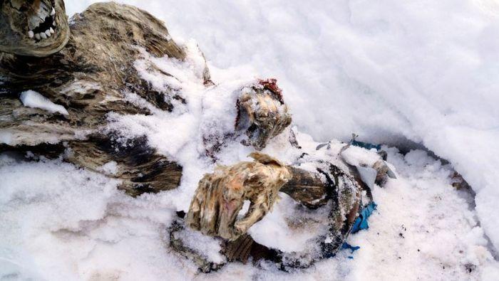 В Мексике обнаружены мумии альпинистов, пропавших без вести 55 лет назад (10 фото)